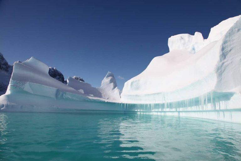 Melhores Cruzeiros Para Antártida